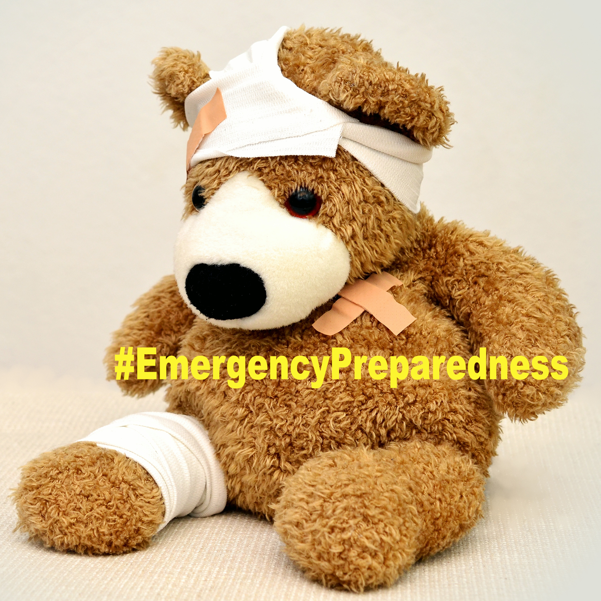 teddy-bear-emergency-prepardness-kit-emergencypreparedness-okstatewide405